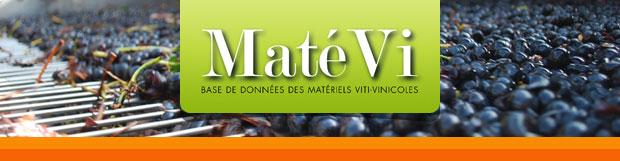 Maté Vi, Base de données des matériels viti-vinicoles
